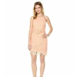BB Dakota Women's Lace Dress, Salmon Pink Size 0